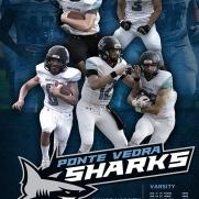 SHARKS-FOOTBALL_PSTR-2015